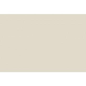 MAE PLAFOND CALM EGGSHELL GREY 10X190X1200 MM